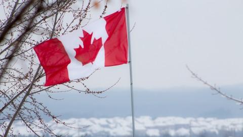 LO QUE DEBE HACER UN COLOMBIANO PARA TRABAJAR EN CANADÁ